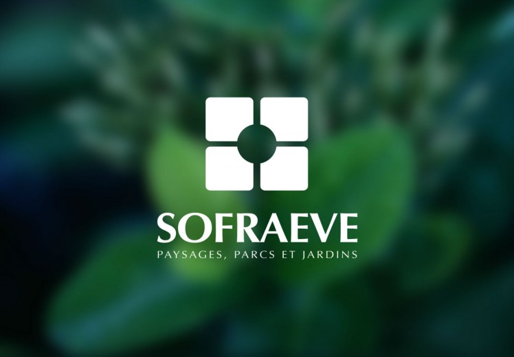 Découvrir le projet Sofraeve – Stratégie et site internet